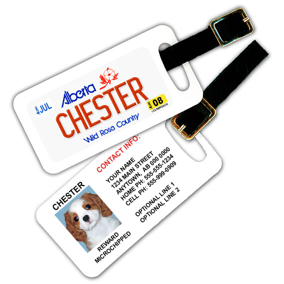 Alberta Licence Plate Pet Luggage Tag