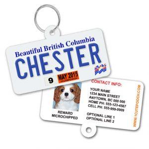 british columbia license plate pet id tag