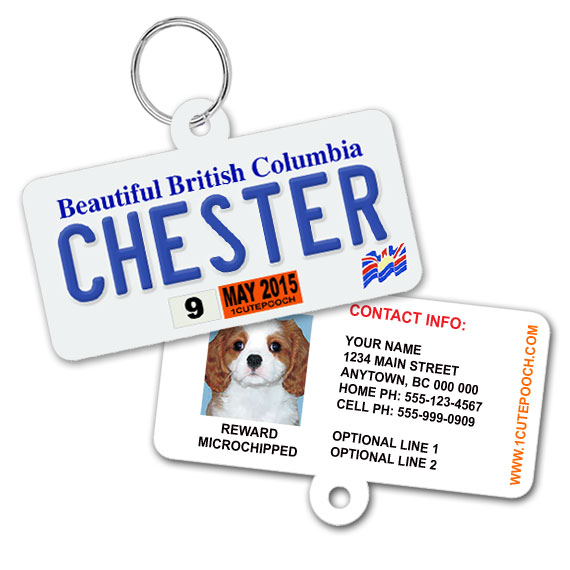 British Columbia Licence Plate Pet ID Tag