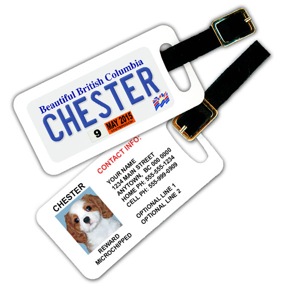 British Columbia Licence Plate Pet Luggage Tag