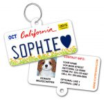 California Kids License Plate Pet ID Tag