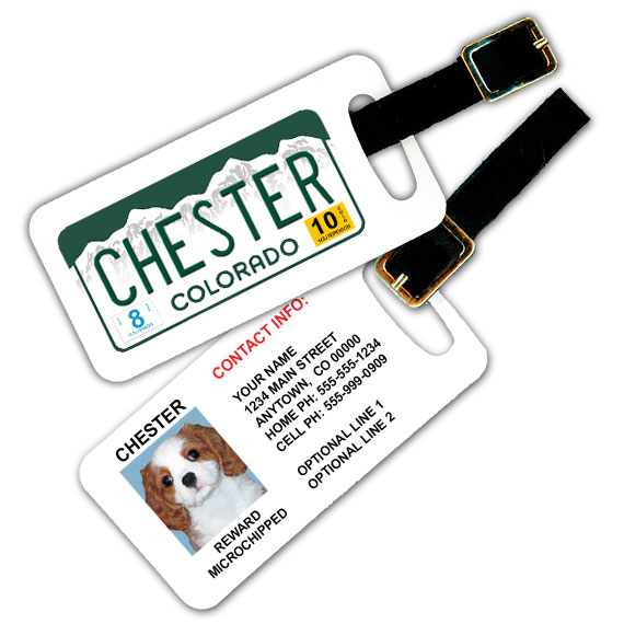 Colorado License Plate Pet Luggage Tag