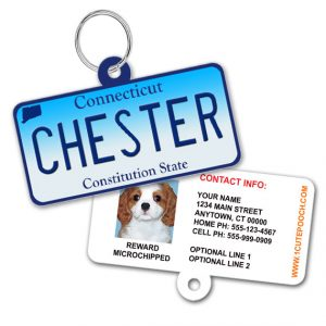 Connecticut License Plate Pet ID Tag
