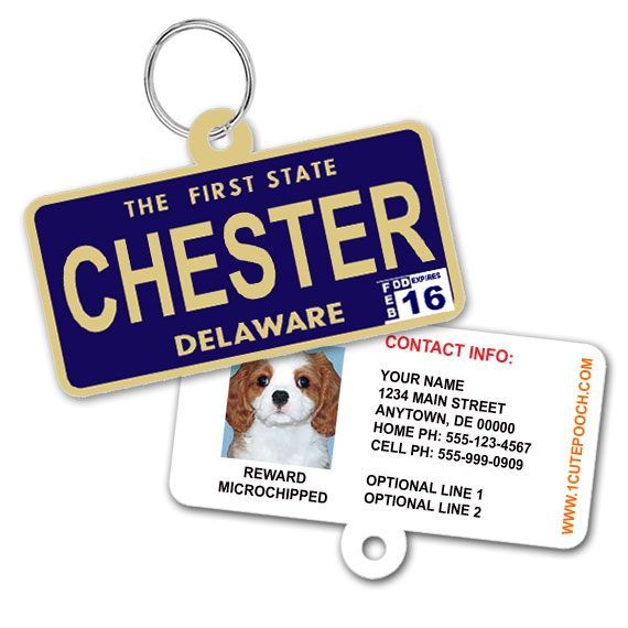 Delaware License Plate Pet ID Tag