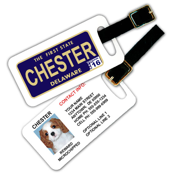 Delaware License Plate Pet Luggage Tag