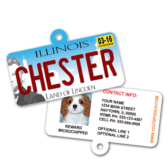 Illinois License Plate Pet ID Tag