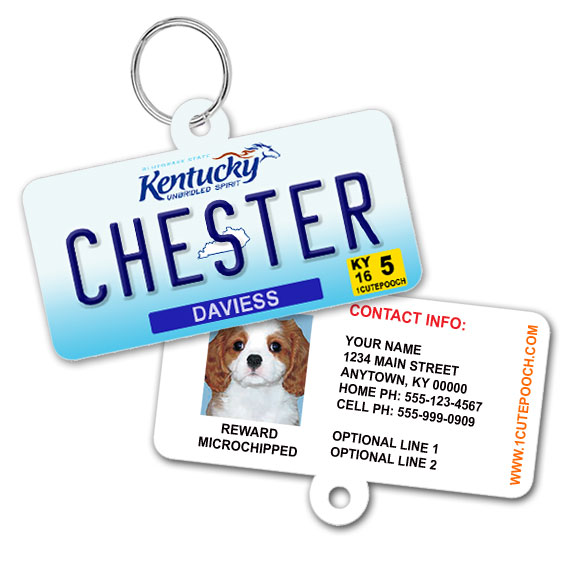 Kentucky License Plate Pet ID Tag