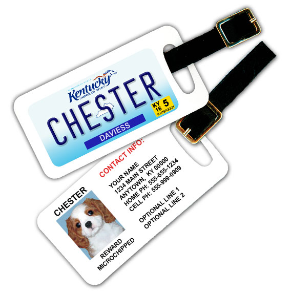 Kentucky License Plate Pet Luggage Tag