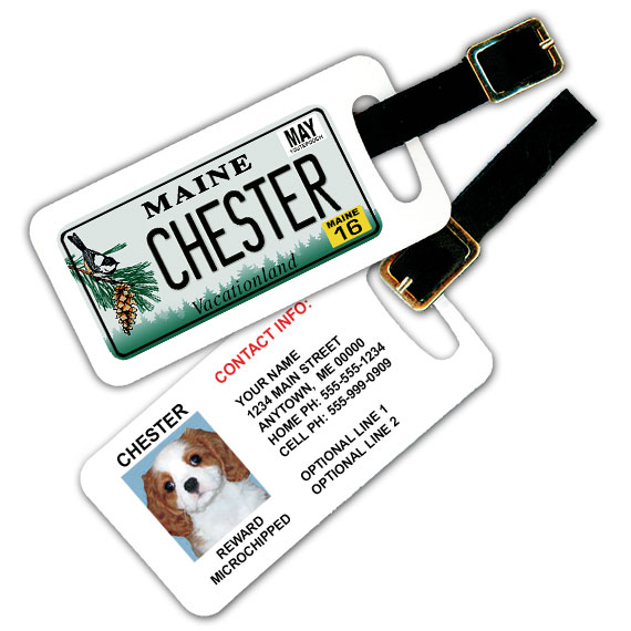 Maine License Plate Pet Luggage Tag