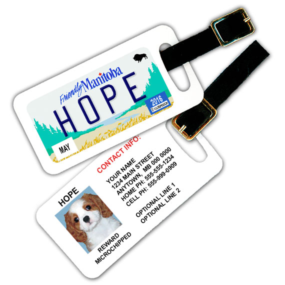 Manitoba Licence Plate Pet Luggage Tag