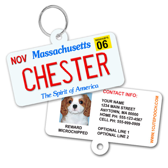 Massachusetts License Plate Pet ID Tag