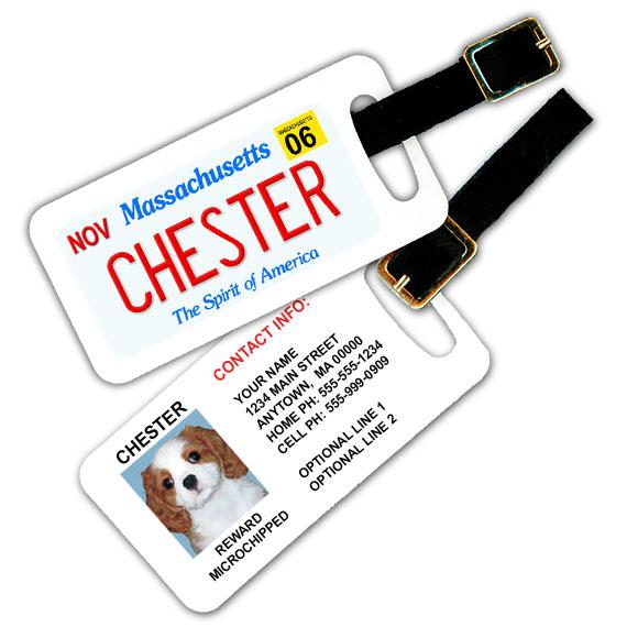 Massachusetts License Plate Pet Luggage Tag