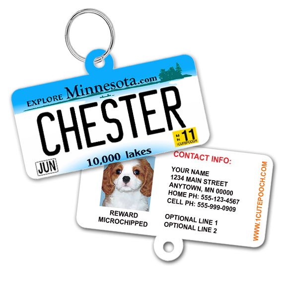 Minnesota License Plate Pet ID Tag