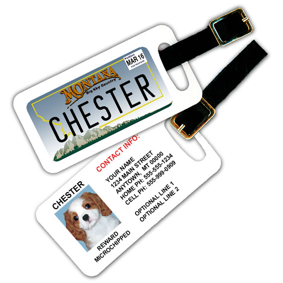 Montana License Plate Pet Luggage Tag