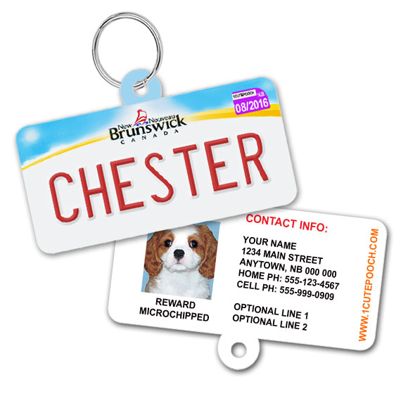 New Brunswick Licence Plate Pet ID Tag