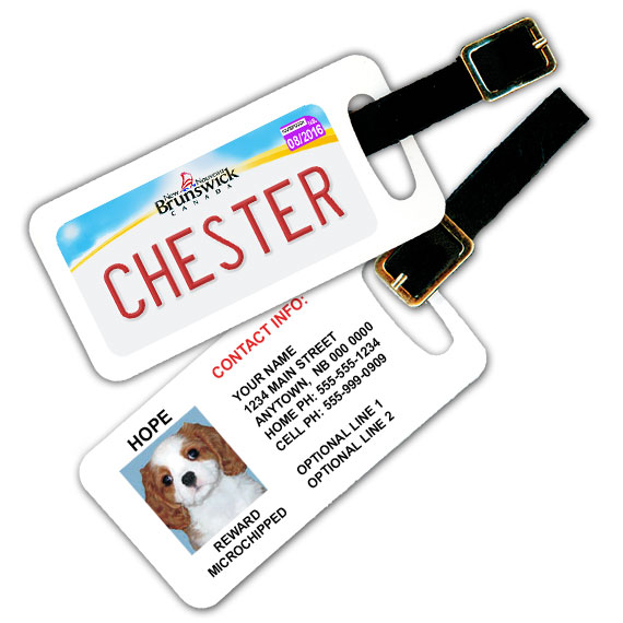 New Brunswick Licence Plate Pet Luggage Tag