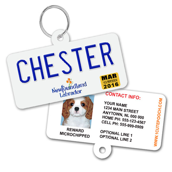 Newfoundland and Labrador Licence Plate Pet ID Tag