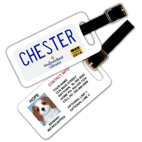 Newfoundland and Labrador Licence Plate Pet Luggage Tag
