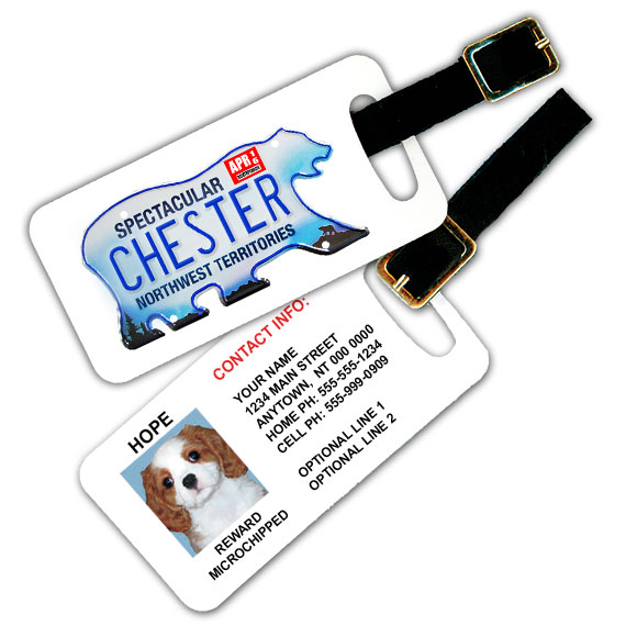 Northwest Territories Licence Plate Pet Luggage Tag