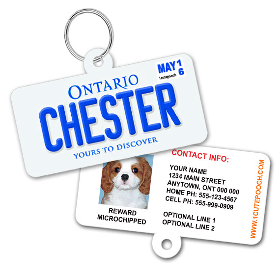 Ontario Licence Plate Pet ID Tag