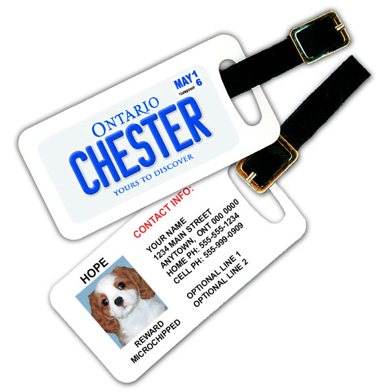 Ontario Licence Plate Pet Luggage Tag