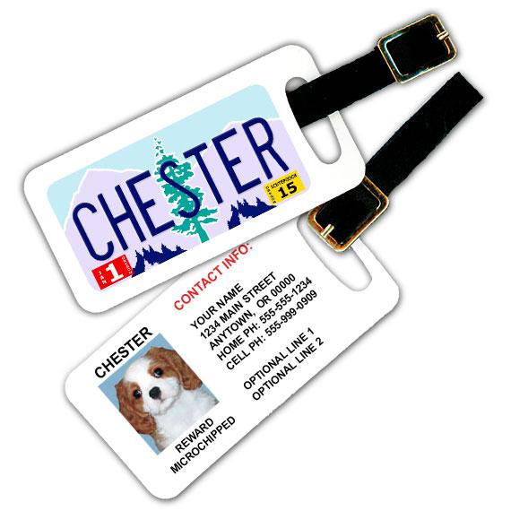 Oregon License Plate Pet Luggage Tag