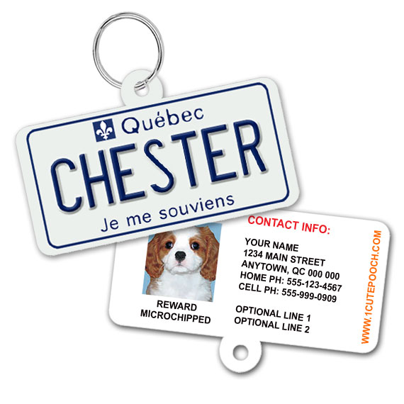 Quebec Licence Plate Pet ID Tag