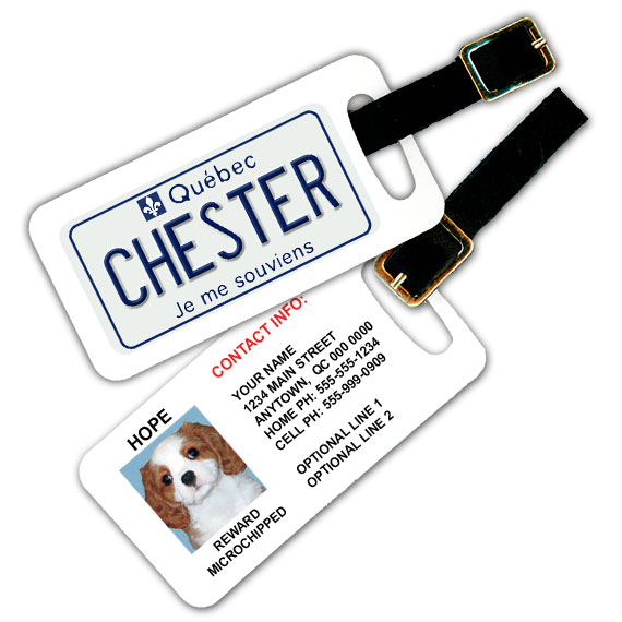 Quebec Licence Plate Pet Luggage Tag