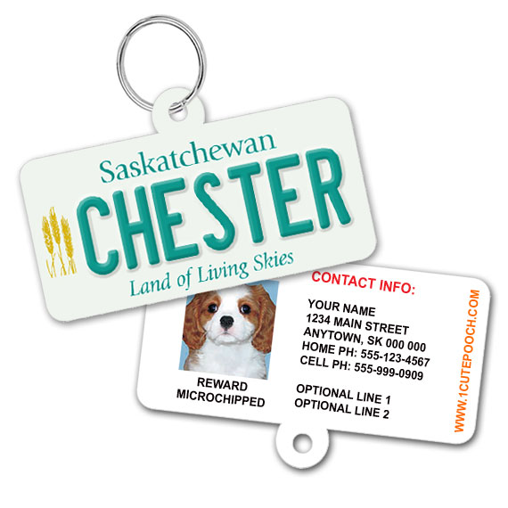 Saskatchewan Licence Plate Pet ID Tag