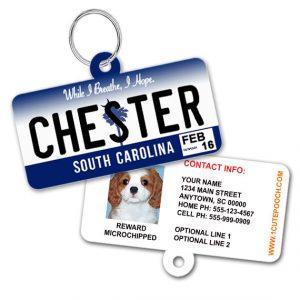 south carolina license plate id tag