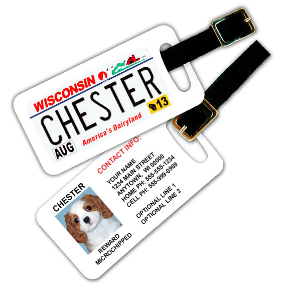 Wisconsin License Plate Pet Luggage Tag
