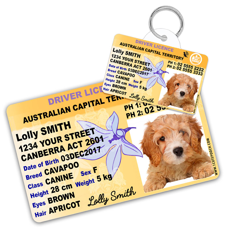 Australian Capital Territory Licence Plate Pet ID Tag