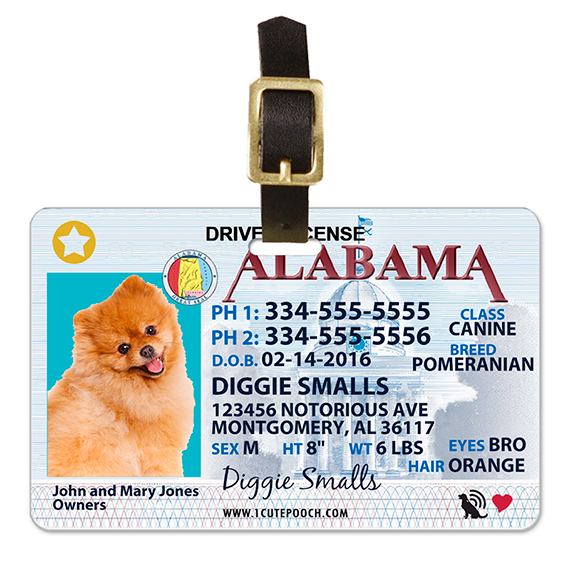 Alabama Driver License Pet Luggage Tag