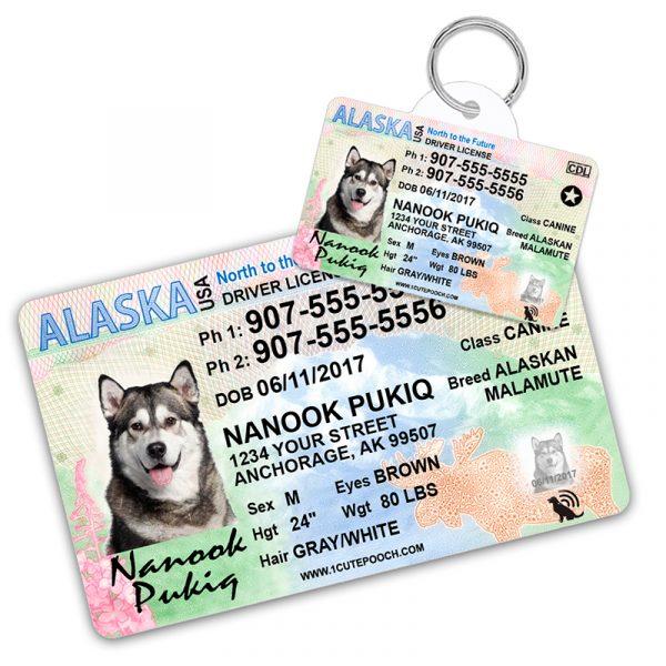 Alaska Driver License Wallet Card and Pet ID Tag