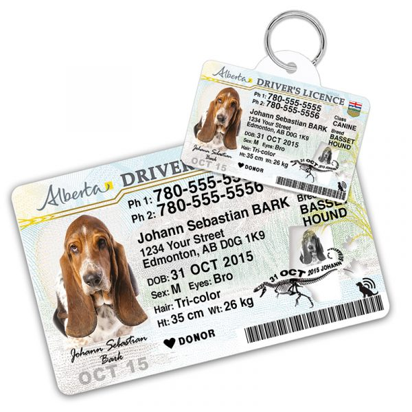 Alberta Driver Licence Wallet Card and Pet ID Tag