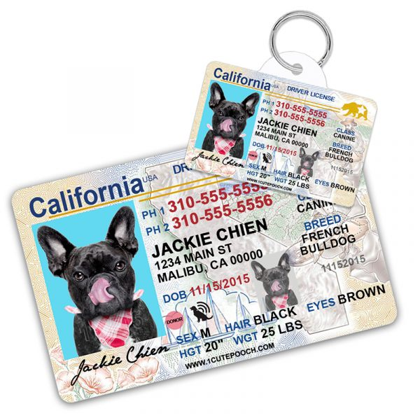 California Driver License Wallet Card and Pet ID Tag