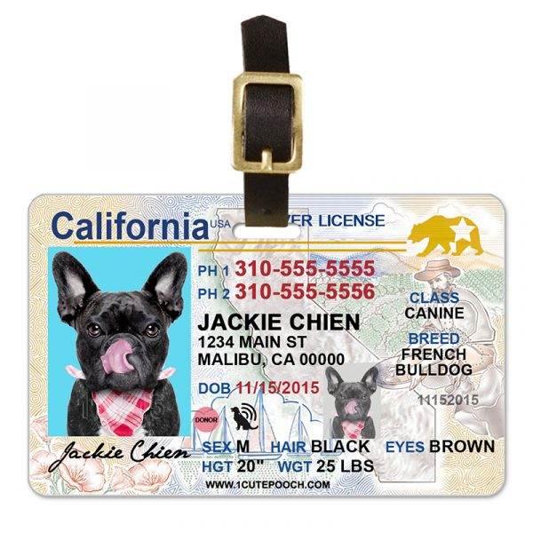 California Driver License Pet Luggage Tag