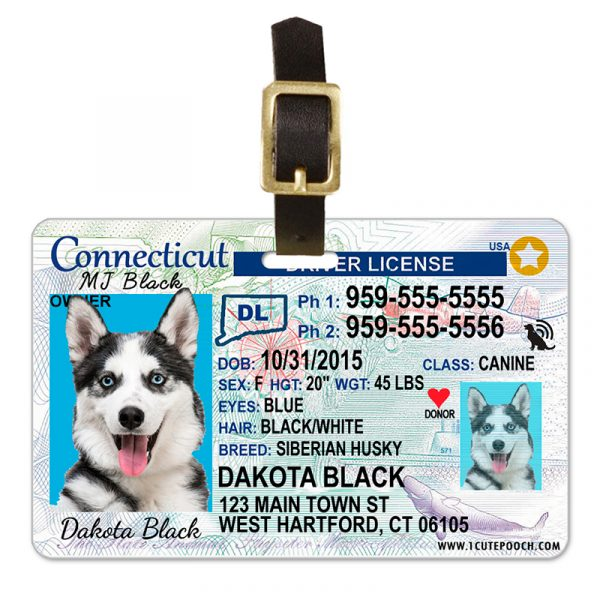 Connecticut Driver License Pet Luggage Tag