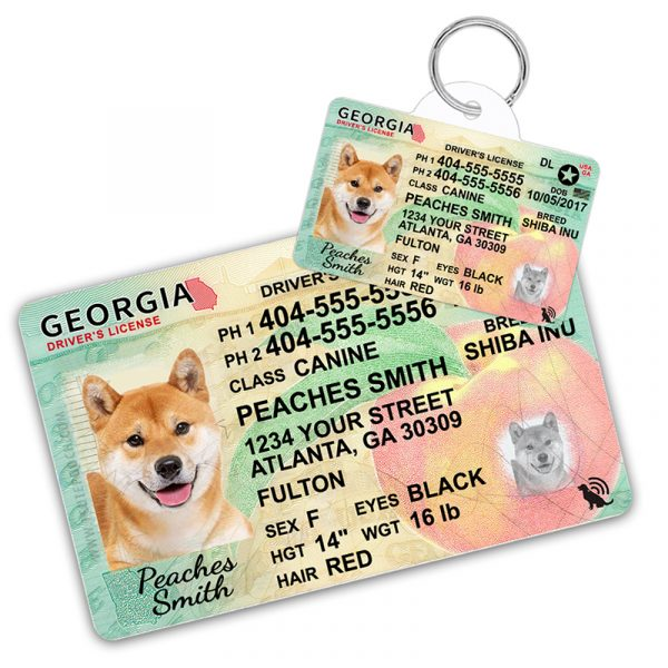 Georgia Driver License Wallet Card and Pet ID Tag
