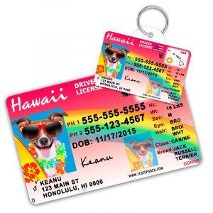 hawaii pet driver license pet id tag 800