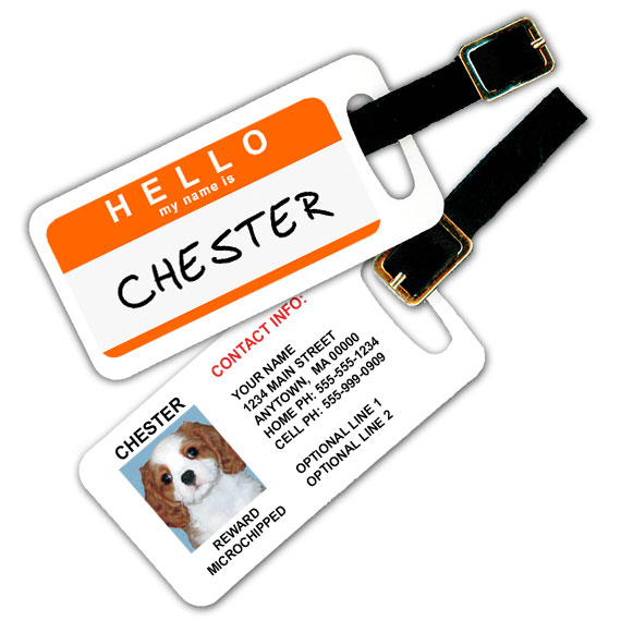 Hello My Name is Personalized Pet Luggage Tag
