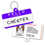 Hello My Name is Personalized Pet ID Tag