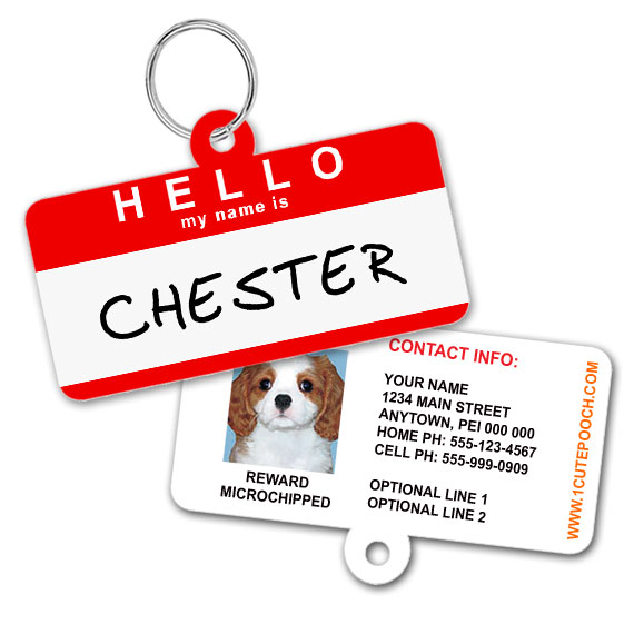 Hello Pet ID Tag
