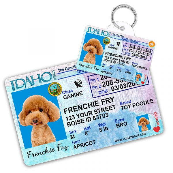 Idaho Driver License Wallet Card and Pet ID Tag