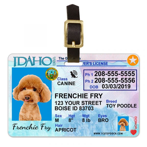 Idaho Driver License Pet Luggage Tag
