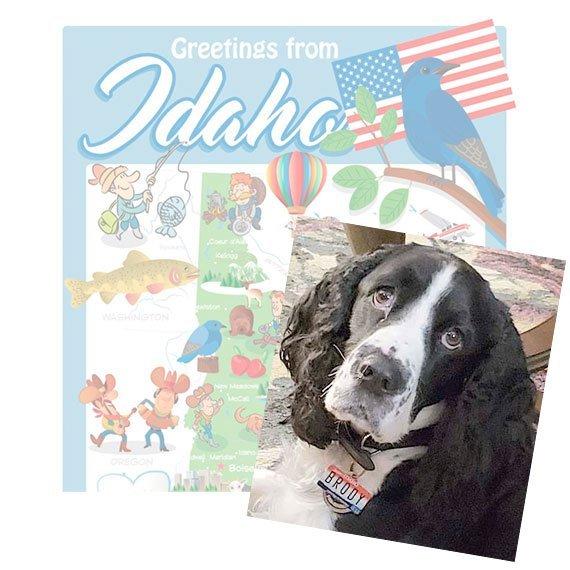 Idaho License Plate Pet ID Tag Customer Photo