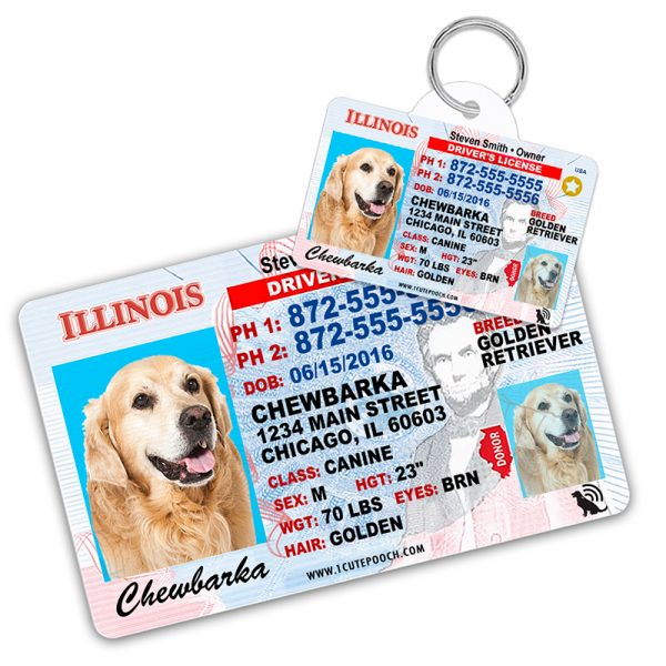 Illinois Driver License Wallet Card and Pet ID Tag