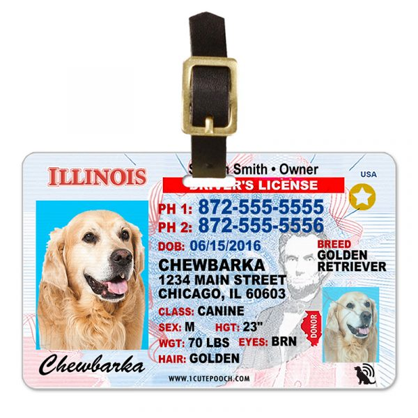 Illinois Driver License Pet Luggage Tag