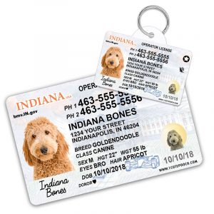indiana pet driver license id tag 800