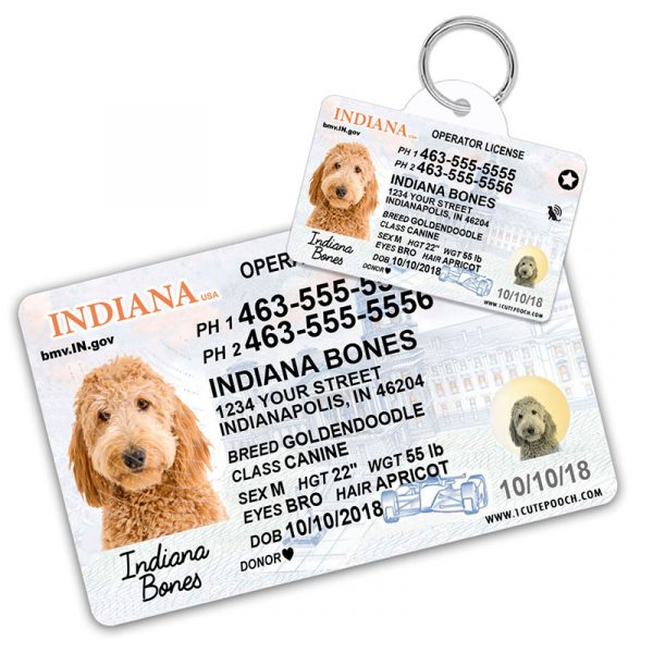 Indiana Driver License Wallet Card and Pet ID Tag